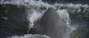 Jaws2-movie-screencaps com-11113