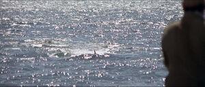 Jaws-movie-screencaps com-10023