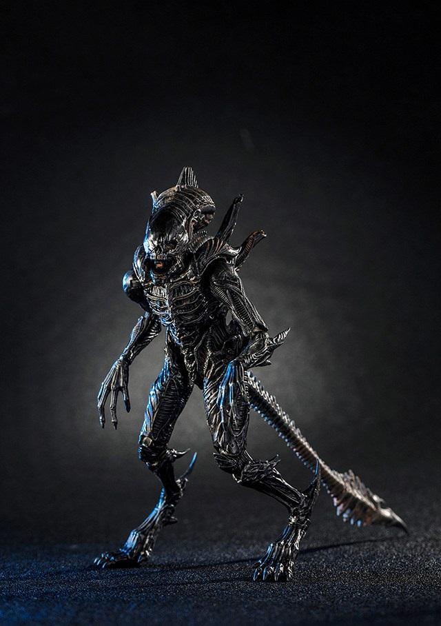 The Raven (Xenomorph)