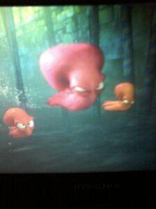 Swimming octopi