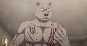 Riz anime 49