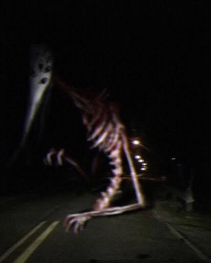 God Of Roadkill