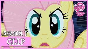 Fluttershy's Stare (Stare Master) MLP FiM HD