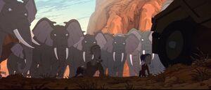 Sloan & Bree Blackburn cornered by furious elephants and rangers