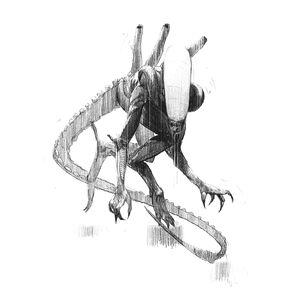 Alien Sketch.0