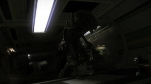 Alien-isolation-gallery-11