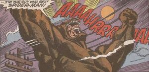 Grizzly (Maxwell Mahham) 005