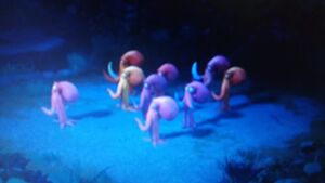 Humming octopi 2