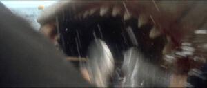 Jaws-movie-screencaps com-13949
