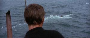 Jaws-movie-screencaps com-11633