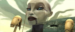 Ventress counter-offer