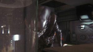 Alien-Isolation-screenshot-3