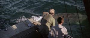 Jaws-movie-screencaps com-9719