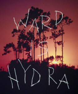 WARD IS HYDRA