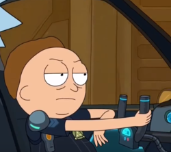 Cop Morty