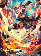 B13-095R artwork