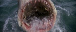 Jaws-movie-screencaps com-13895