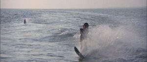 Jaws2-movie-screencaps com-2186