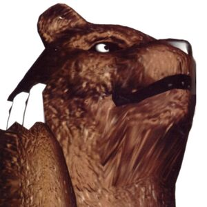 Kuma - Closeup - Face - Tekken 2