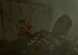The mist leeches