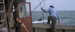 Jaws-movie-screencaps com-11770