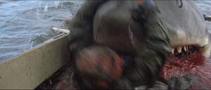 Jaws-movie-screencaps com-13972