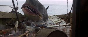 Jaws-movie-screencaps com-13923