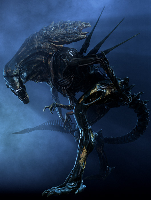 Antarctic Queen Xenomorph