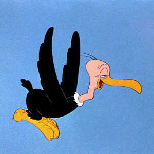 Beaky Flying