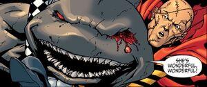 King Shark 50