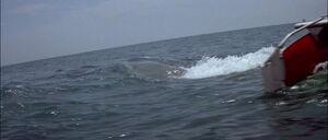 Jaws2-movie-screencaps com-9828