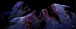 Predator X 023.jpg