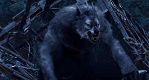 Grey Werewolf busts