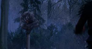 Grey Werewolf pillar