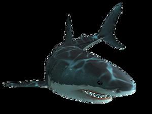 Jaws Unleashed shark