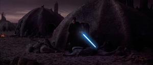 Skywalker slaughters