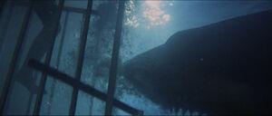 Jaws-movie-screencaps com-13693