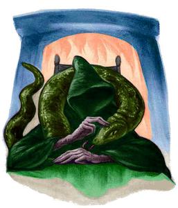 Voldemort Book HP