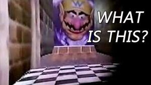 What Is The 1995 07 29 Build? (The Wario Apparition Explained)