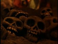 MTI Skulls