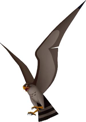 Hayabusa the Falcon