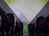 Screweyes' Elephants