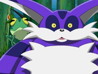 Big-the-Cat.jpg