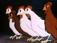 Animal-Farm-2-Chickens