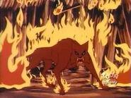 Firecats