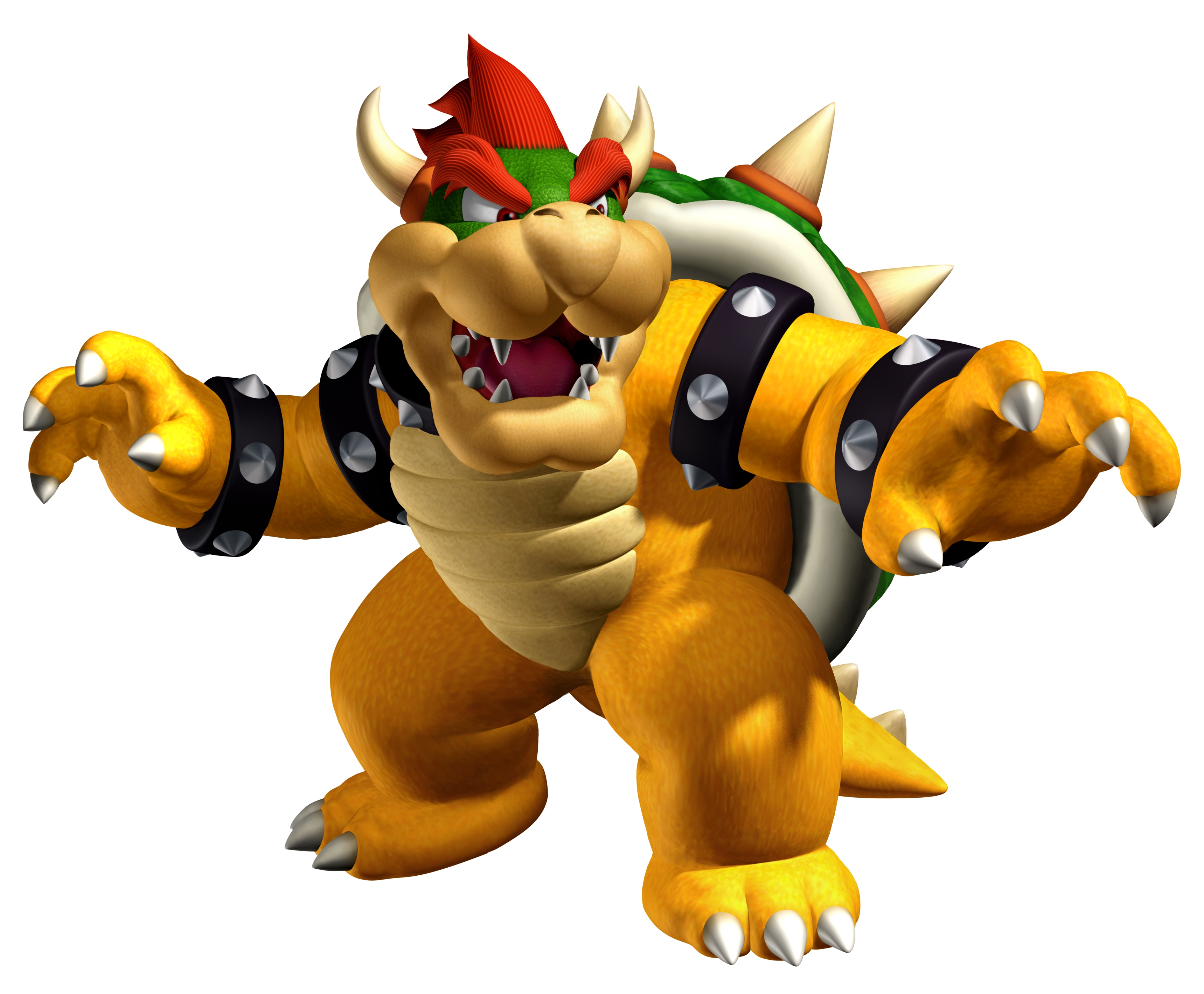 Bowser's Alliance