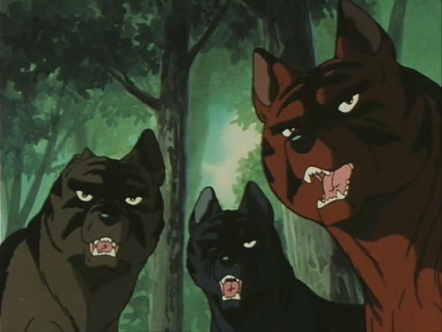 Akatora, Chutora and Kurotora