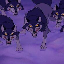 Black Forest Wolves.jpg
