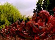 Lava Lizards