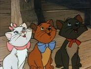 Duchess' Kittens